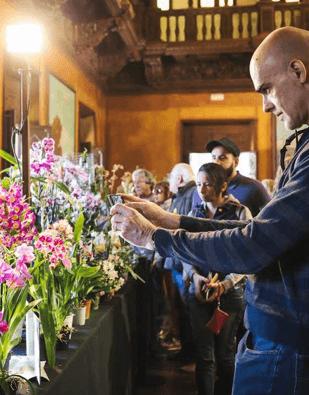 Poble Espanyol, de flor en flor
