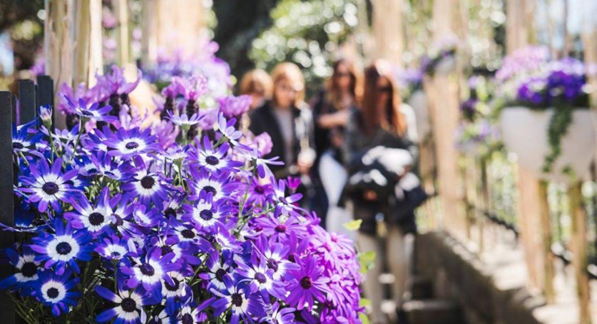 DE FLOR EN FLOR, el festival de flores y jardines de Barcelona