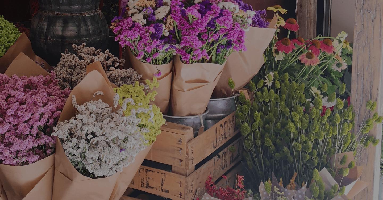 Fondo imagen floristes